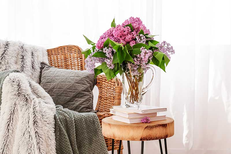arranjo_flores