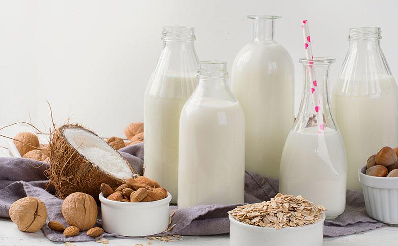 como fazer leite vegetal